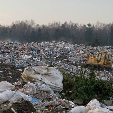 Germany wants EU to remove recycling targets, fueling speculations about its motives….